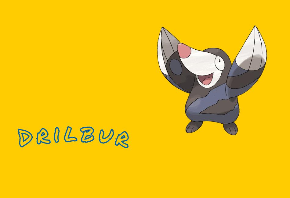 Drilbur Guide