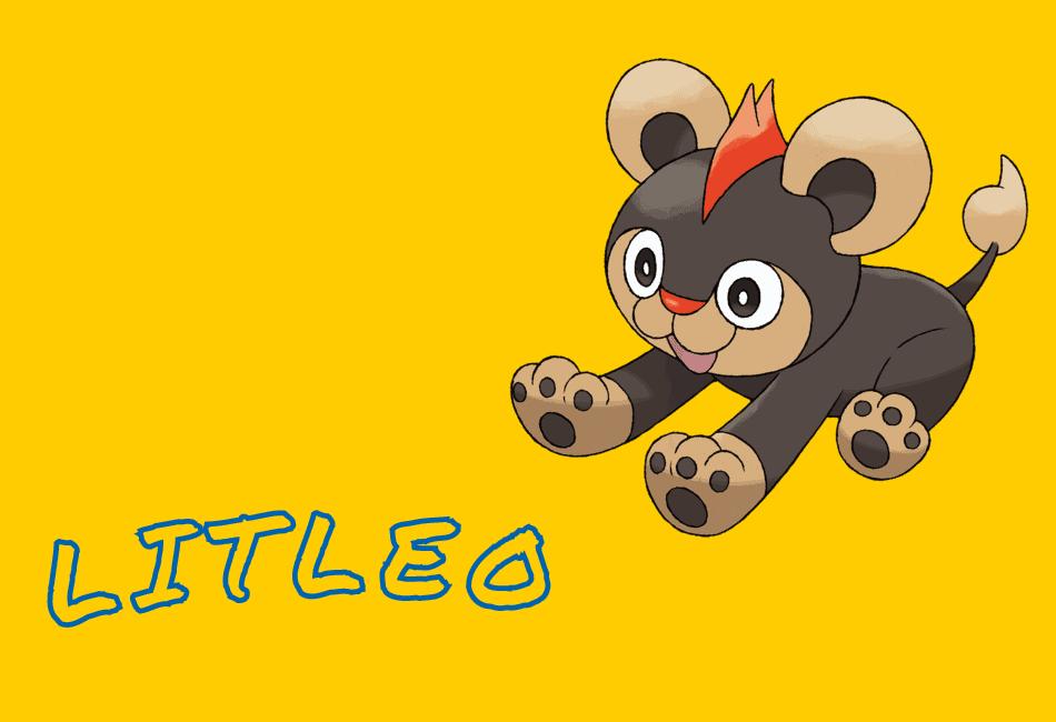 Litleo Guide